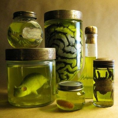 Specimens in jars