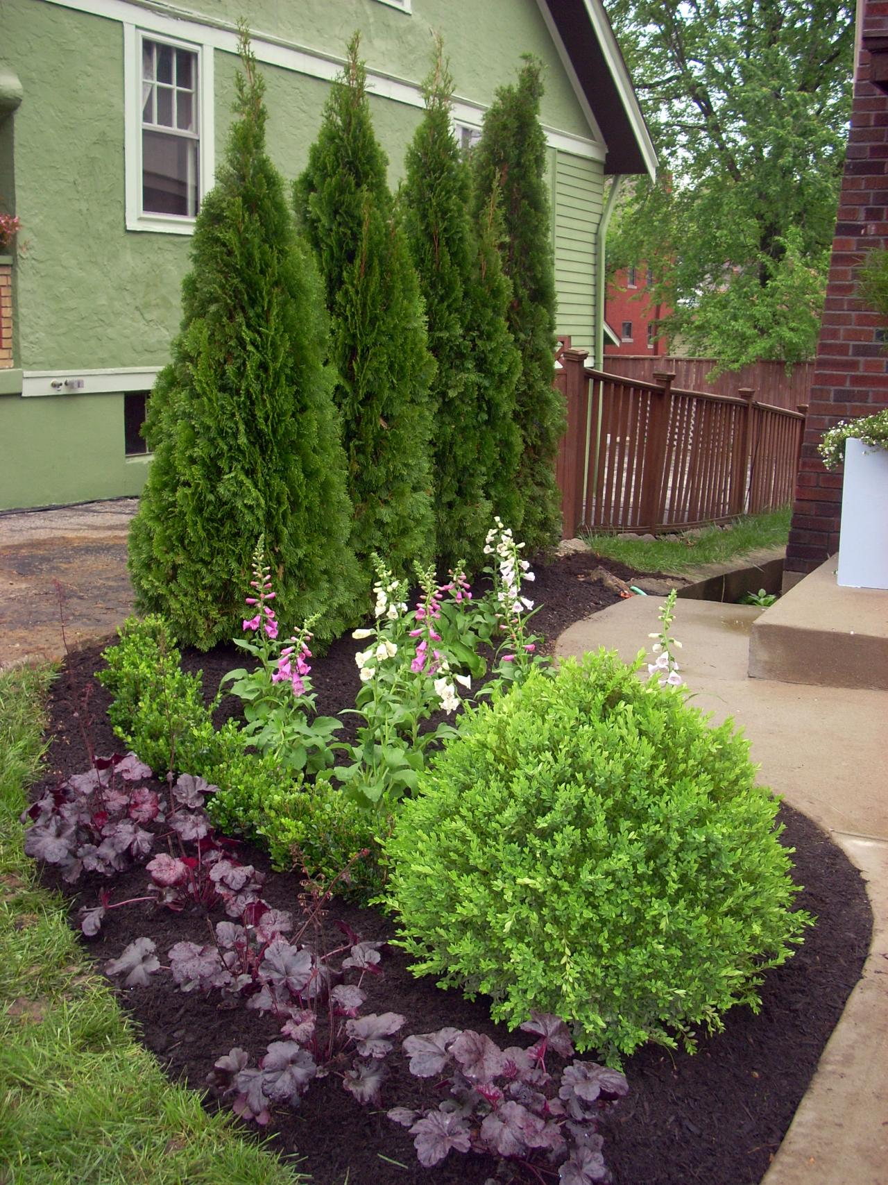 deck and patio designs with plants- Plants for your deck or patio- Amazing Deck